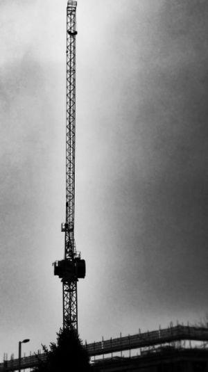Cranespotting Blackandwhite