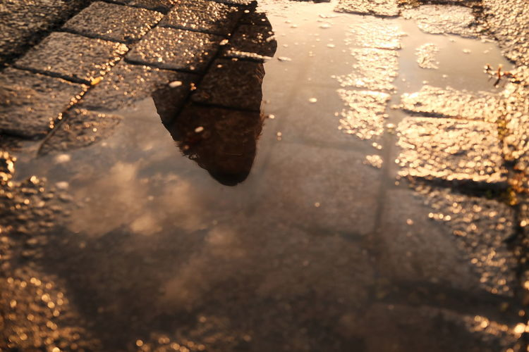 High angle view of wet puddle on street