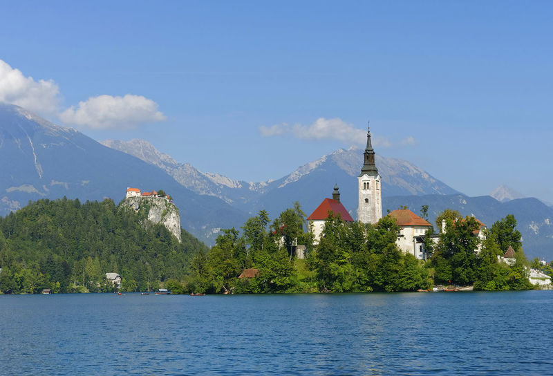 Beauty In Nature Castle Church Day Island On The Lake Bled Lake Bled, Slovenia Mountain Nature No People Outdoors Scenics Sky Tree