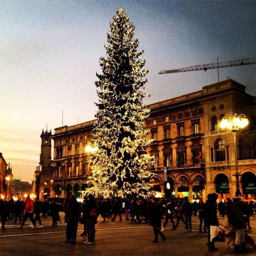 Christmas in Milano, Italy EyeEm Best Shots EyeEm Best Edits Photooftheday Cityscapes Urban NEM Memories Italy Lights Trees Hanging Out