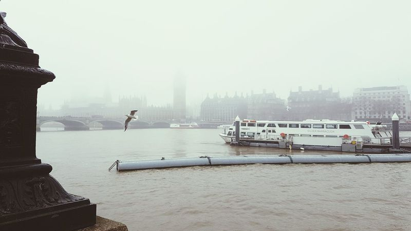 Larus thamesbus Fog Travel Destinations Sky Outdoors City Water Bridge - Man Made Structure No People Nautical Vessel Day Architecture Tourism City LONDON❤ London Lifestyle Westminster London Foggy Mist River Thames Thames River Houses Of Parliament On The River Thames Houses Of Parliament Big Ben, London Big Ben