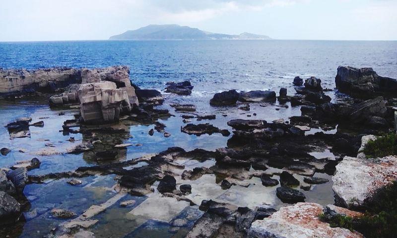 Favignana's Sea