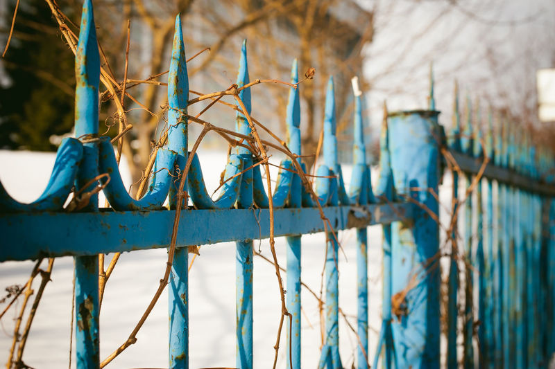 Architecture Bare Tree Blue Built Structure Close-up Day Metal Nature No People Outdoors Sky Tree