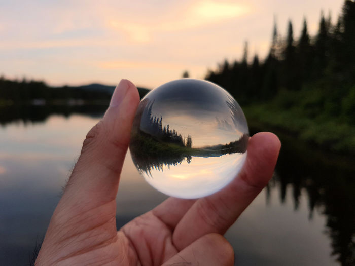Cropped image of hand holding crystal ball against trees