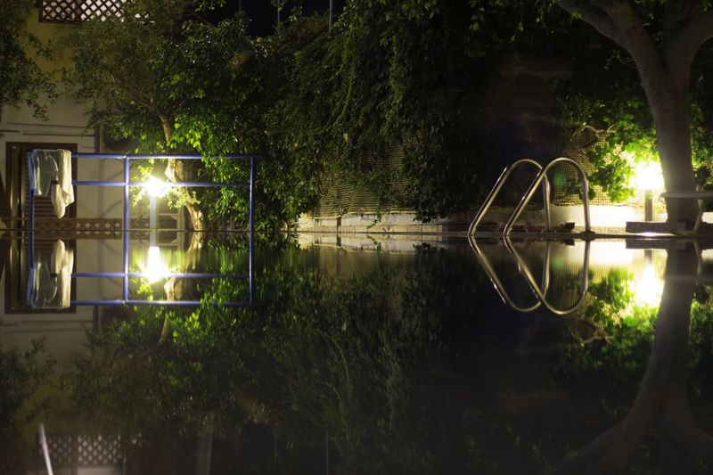 Building and trees reflecting in swimming pool at night
