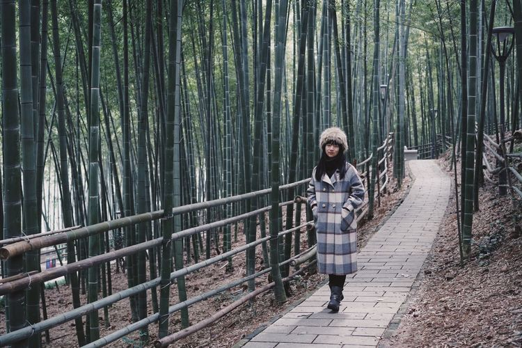 Bamboo - Plant One Person Real People Leisure Activity Tree Lifestyles Casual Clothing Plant Standing Forest Nature Barrier Outdoors