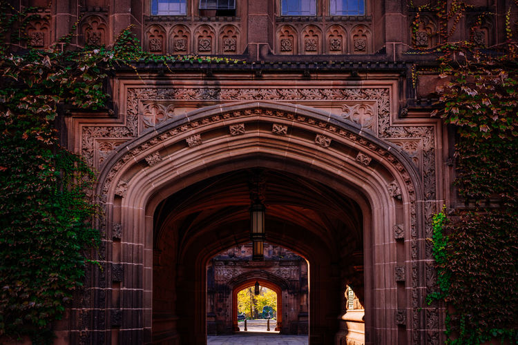 Majestic East Pyne Hall of Princeton University Amazing Amazing Architecture Architecture Architecture Architecture_collection Autumn Beautiful Beauty Building Campus Cinematic Day Elite Ivy Ivy League Ivy Leaves No People Orange Prestige Princeton Princeton University Romantic Tiger Top Travel