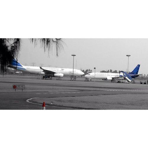 Garuda Indonesia vs Sriwijaya Airbus A332 Boeing 737 samsung nx300 cgk shia