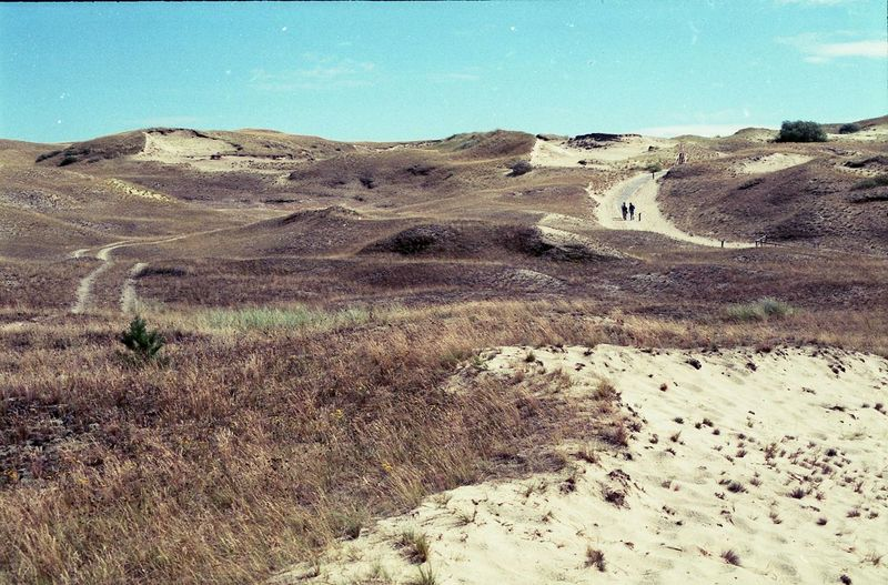 Beauty In Nature Curonian Spit Day Dead Dunes Dunes Landscape Lithuania Nature Neringa Outdoors Sky The Great Outdoors - 2016 EyeEm Awards
