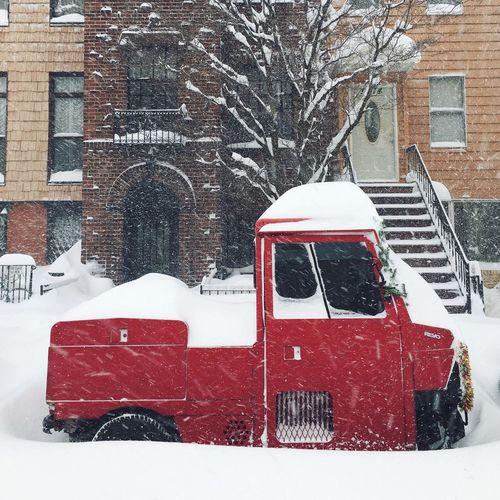 Blizzard Snow