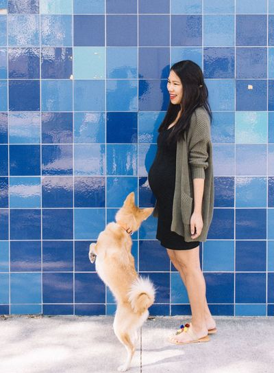 Smiling Pregnant Woman With Dog By Blue Wall