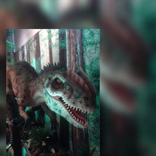 Scary Rawr DinosaursAroundTheWorld ClintonLibrary
