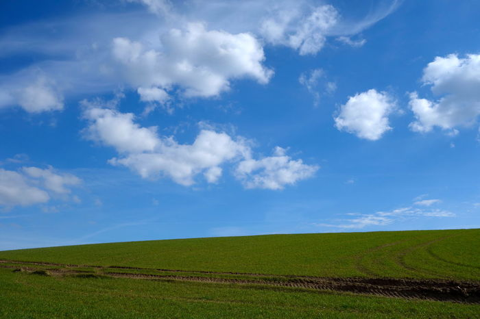 Beautiful Blue Sky Clouds Countryside Day Daylight Daytime Field Grass Green Landscape Nature Nature Noon Outdoors Rural Springtime Summer Sunny