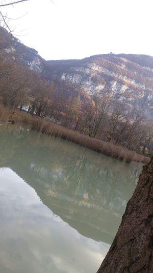 Veyrier Water Landscape Reflet
