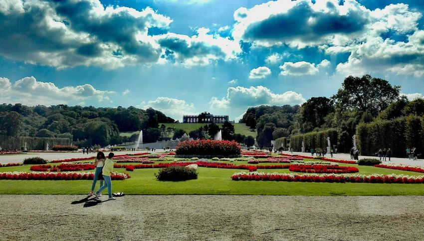 Capture The Moment Vienna Colors Photography Nature View Outdoors Colorful Flowers Shönbrunn Garden EyeEmNewHere The Week On EyeEm