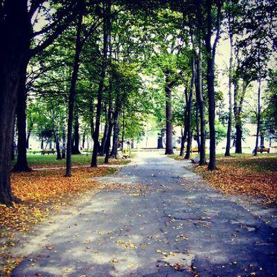 Autumn is coming... Vinnitsa Vnua Weather photooftheday igukraine sirsergephoto