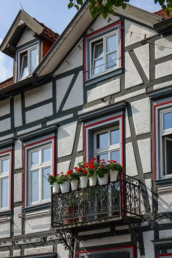 Balkon Blumen Fachwerkhaus Apartment Architecture Balcony Building Building Exterior Built Structure Day Flower Flower Pot Flowering Plant Growth House Houseplant Low Angle View Nature No People Outdoors Plant Potted Plant Railing Residential District Row House Warburg Altstadt Window Window Box