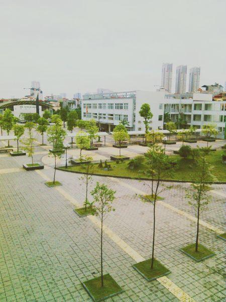 """Bọn nó thường hỏi """" chỗ này để làm gì? Phí phạm đất.."""" nhưng mình thấy chỗ này đẹp mà :)) MySchool"""