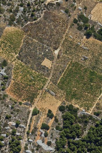 Aerial view of the farms in hvar island, croatia