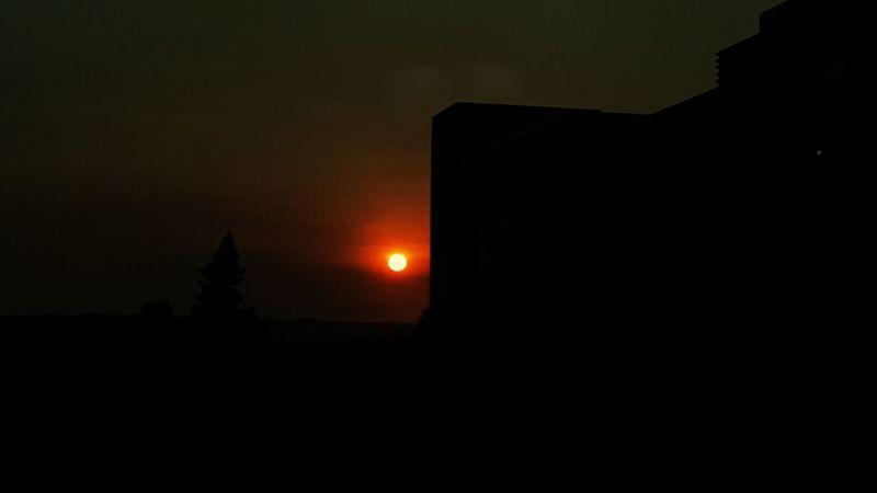 Sun Sunset_collection Sunset Silhouettes Sunset Lovers Sunset Silhouette Sunsets Of Eyeem Sunset Sunsets Sun_collection Sunset_captures
