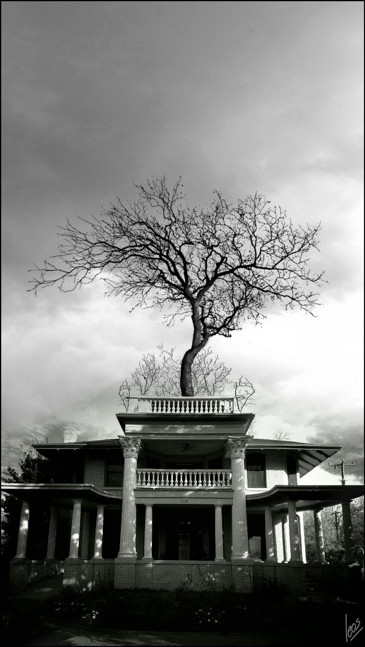 architecture, built structure, sky, bare tree, cloud - sky, building exterior, tree, cloudy, low angle view, bridge - man made structure, overcast, connection, cloud, weather, railing, branch, bridge, day, outdoors, nature