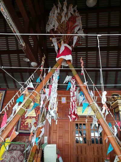 Hanging Bunting