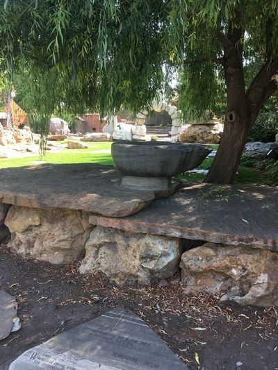 Beautiful Utah Beauty In Nature Day Grass Growth Nature No People Outdoors Rock - Object Tranquility Tree Water
