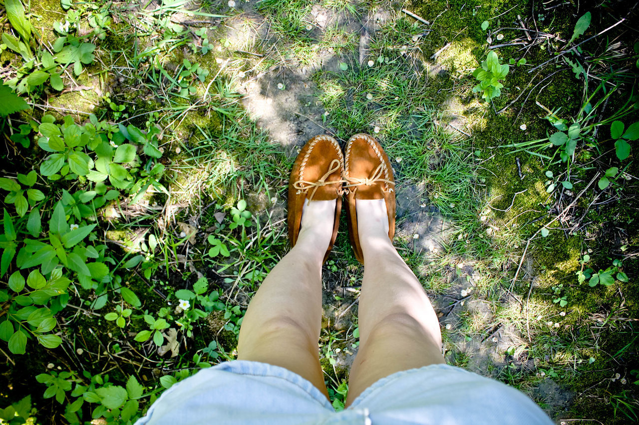 low section, personal perspective, human leg, shoe, one person, human foot, real people, standing, high angle view, outdoors, women, nature, day, human body part, growth, plant, lifestyles, grass, beauty in nature, flower, people