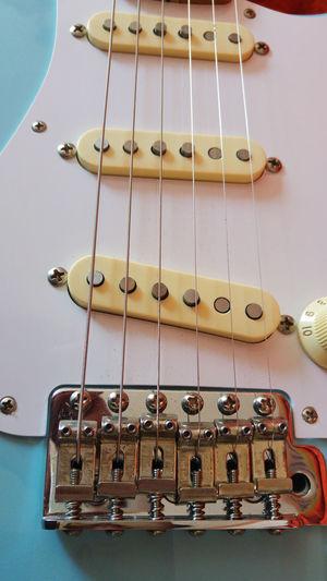 Daphne Guitar Guitar Love Guitarra Guitarporn Stratocaster Fender Fender Stratocaster Fenderguitar Fenderstratocaster Music Music Is My Life Musica Musical Instruments Musical Instrument Instrumentomusical PhonePhotography
