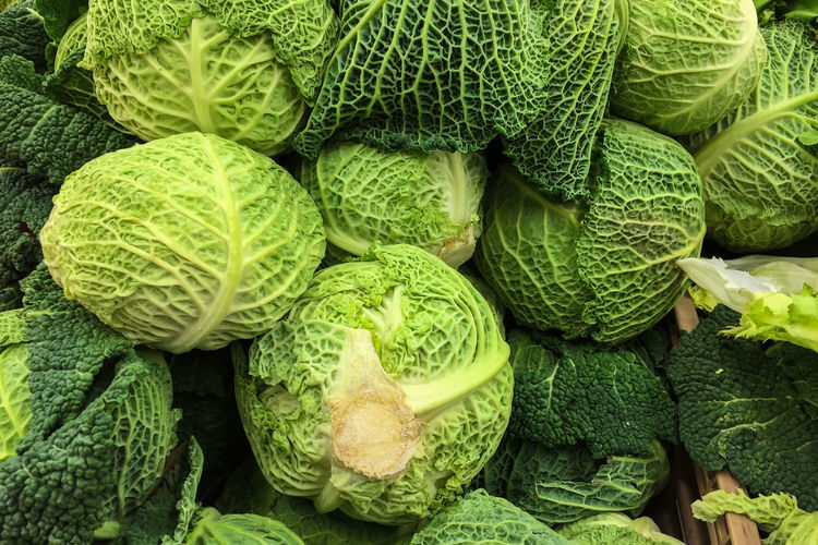 Backgrounds Close-up Colours Day Food Food And Drink For Sale Freshness Full Frame Gabbage Green Color Healthy Eating High Angle View Large Group Of Objects Market Market Market Stall Nature No People Outdoors Savoy Cabbage Vegetable Vegetables Vegetables & Fruits