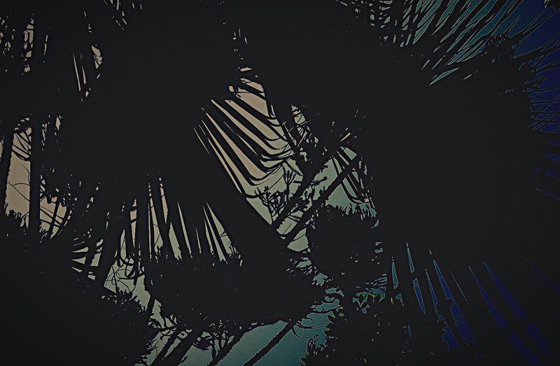 Good Times Bestfriend Everyday Joy 童 土 縁 音 生命 身体 心 脳 影 光 Enjoying The Sun Hello World Life's Journey  Enjoying Life Light And Shadow Enjoying Nature One Love Smoking Coffee My Daughter My Son Funky Famiry 休みの朝、起きると同時に、3人で海へと向かう。歩いて5分で到着、30分ほど泳いだり、浮かんだり、人体サーフィンしたり勝手気儘に。ひとしきり寝起きで遊んだら、家の前でホースの水と戯れる。やり過ぎてしこたま怒られる。冷えた身体を太陽で温め、朝飯にありつく。朝飯はそーめん。夏の陽気に任せ、がっついていた娘がむせこみ、右の鼻からニョロっとww正面の特等席で一部始終を観ていた小僧が、大爆笑の結果むせこみ両方の鼻からニョロニョロっとwwオレ、そーめんをテーブルじゅうに吹き出し、またまたしこたま怒られる。3人は恐れおののき、自転車とスケボーに飛び乗って逃げるw昼まで遊び倒す。またまた家の前でホースの水、しこたま怒られるw昼飯、これまた結局、しこたま怒られるwwよそ行きに着替えさせられ、買い物に付き合わされる、到着の頃には3人とも結局半裸wそんでまた、しこたま怒られてw休みの日、最高です。