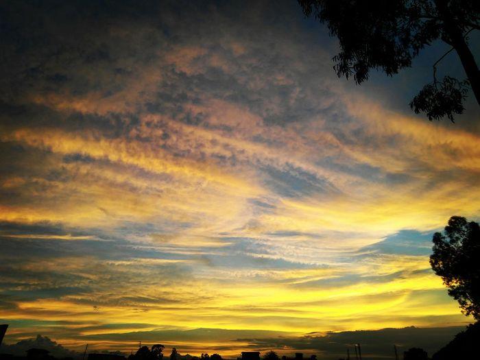 pocket_world #ig_landscape #dream_spots #visual_heaven #landscapephoto #landscape_lover #natgeoadventure #earthexperience #mthrworld #majestic_earth #igworldglobal #ilovenature #ig_divineshots #EarthOfficial #earth_shotz #marvelshots #theworldshotz #discoverglobe #landscapelover #landscapehunter #igbest_shotz #natgeoyourshot #natgeotravelpic #epic_captures #awesomeglobe #splendid_earth #earth_portraits #natureperfectionSilhouette Sunset Dramatic Sky Multi Colored Scenics Nature Sky Beauty In Nature Landscape Cloud - Sky Yellow Outdoors Tranquil Scene Tranquility Rural Scene No People Day Tree