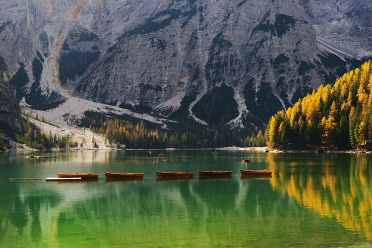 Autumn Autumn Colors Braies Lake Dolomites Fall Beauty Fall Colors Landscape_Collection Travel Travel Photography Beauty In Nature Braies Lake Day Europe Fall Foliage Italy Italy❤️ Lake Lake View Landscape Landscape_photography Nature Outdoors Travel Destinations Tree Water