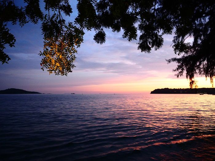 Dinner in Phuket, Thailand Water Sea Sky Sunset Tranquility Scenics - Nature Tree Beauty In Nature Outdoors