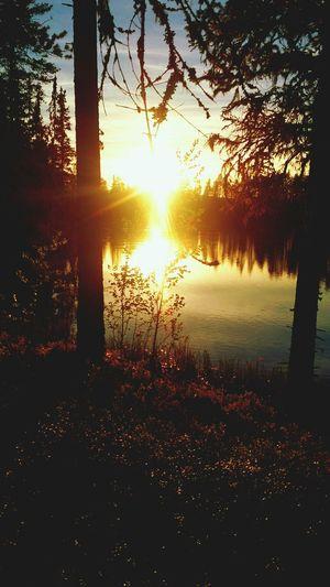 Lake Enjoying The Sunset Relaxing Enjoying Life