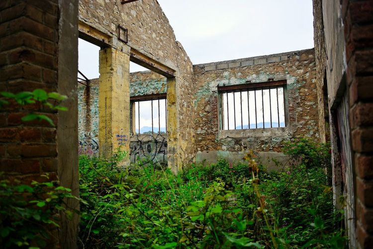 Abandoned Abandoned Places Urbex Wild History Window Building Exterior Built Structure