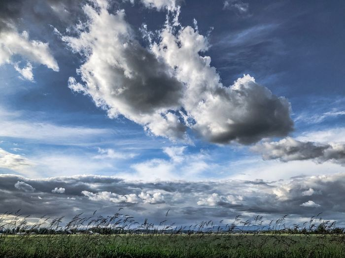 Cloud - Sky Sky Beauty In Nature Nature Tranquility Tranquil Scene No People Day Scenics - Nature Outdoors Low Angle View Field Land Blue Environment Idyllic Landscape