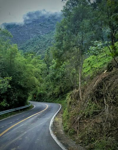RoadHills Desertroad