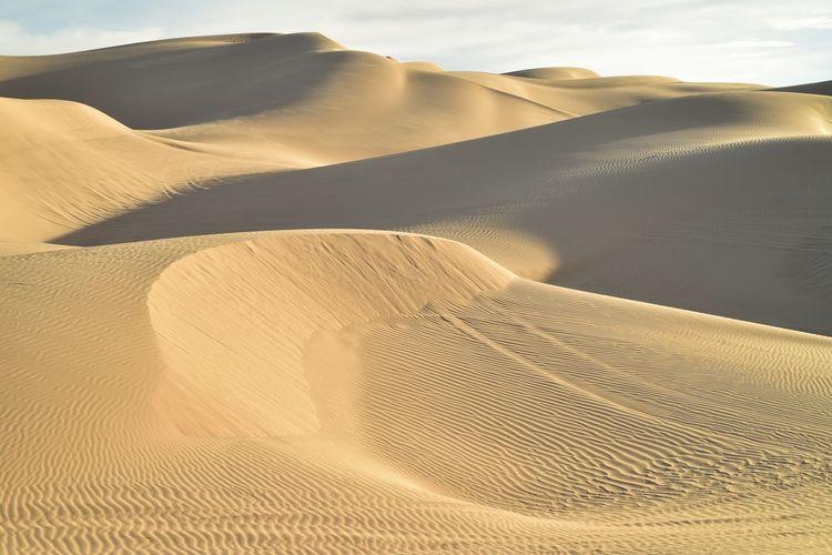 Sand dunes in a desert