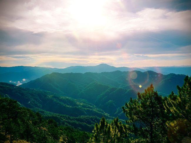 Forest Tree Mountain Mountain Range Beauty In Nature Sunset Mountain Peak Nature Outdoors