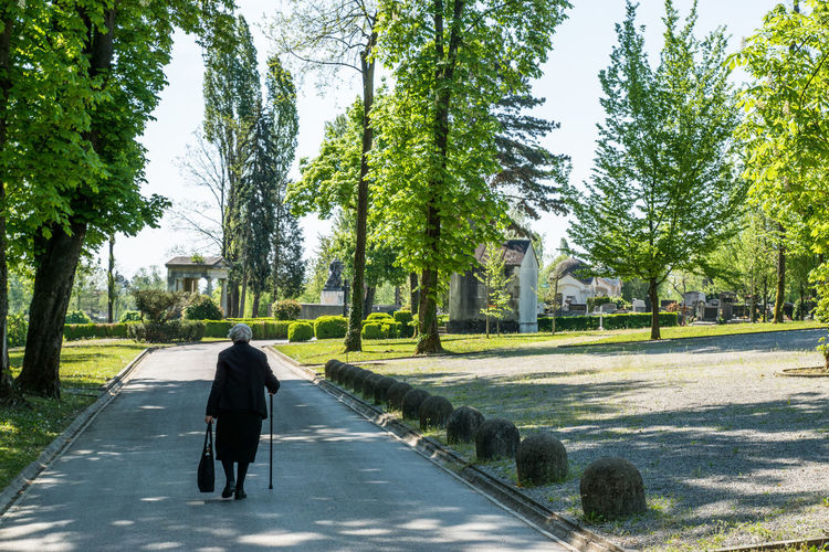 Rear view of woman walking on pathway along trees