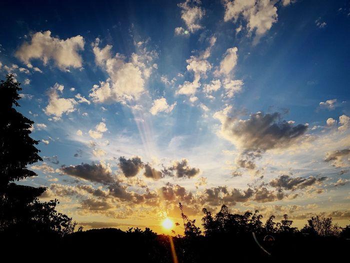 Sundowner -