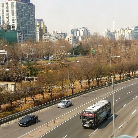 Subway Shot Roadandscenery Roadscene Yeouido Bare Trees Seoul Southkorea Seoulspring2017