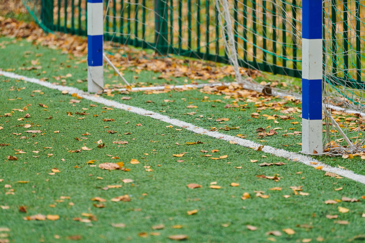 Fallen leaves on field in park during autumn