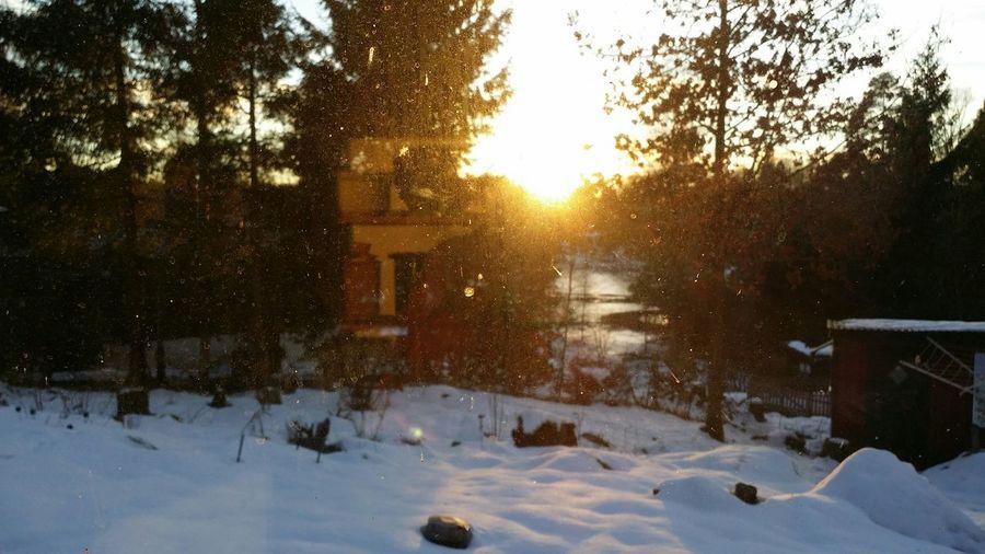 Through my kitchen window... Home Sweet Home winterwonderland Nature