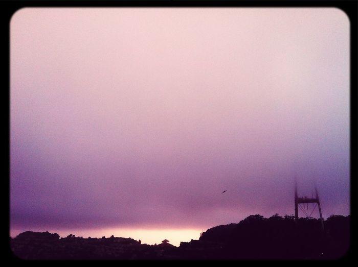Sutro Sunsetnset The Fog...