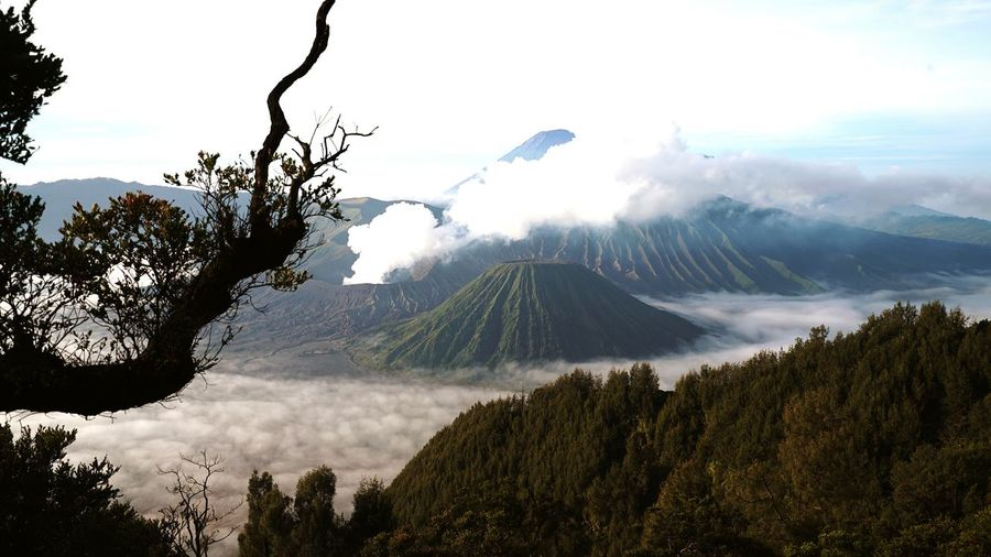 Mountain Landscape Outdoors Nature Bromo Mountain BromoTenggerSemeru Bromo Wonderful Indonesia INDONESIA Perspectives On Nature