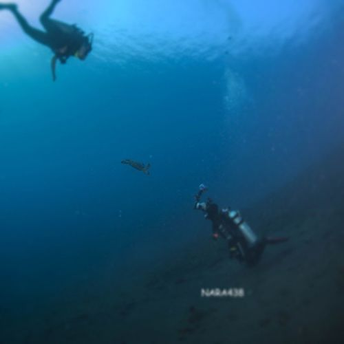 Tulamben Bali INDONESIA Loveindonesia diving scubadiving wide wideangle underwaterfotografi android