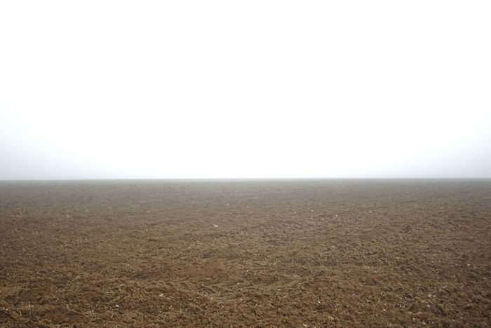 gursky by nature Nature Horizon Over Land Landscape Fog Beauty In Nature Outdoors Sunday Morning Foggy Morning Würzburg Winter 2017 Out In The Fields Outdoor Photography Tristesse Tranquility Chilly Day Sony A6000 Gurskystyle