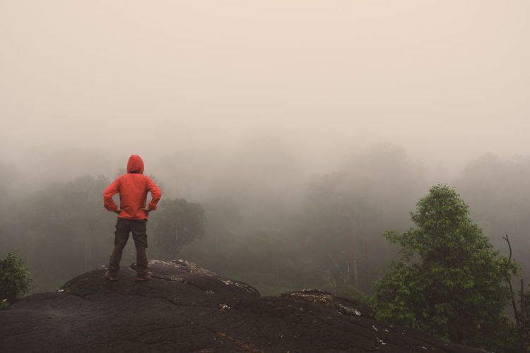 Rear view of man standing on cliff against trees during foggy weather